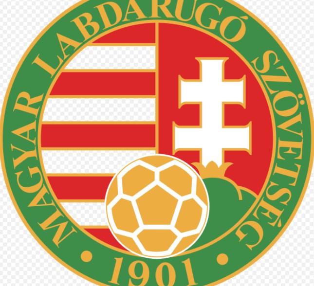 匈牙利足协正面临欧洲管理机构欧洲足球联合会联盟的制裁